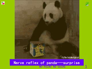 Nerve reflex of panda---surprise