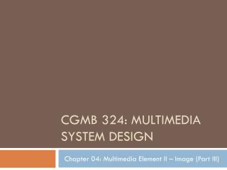 CGMB 324: Multimedia System design
