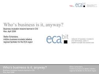 Who's business is it, anyway? Business incubation lessons learned in CIS Kiev, April 2008