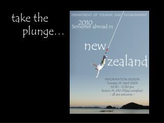 take the     plunge…