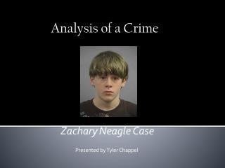 Zachary Neagle Case