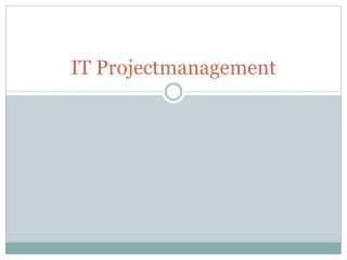 IT  Projectmanagement