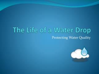 The Life of a Water Drop