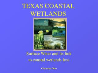 TEXAS COASTAL WETLANDS