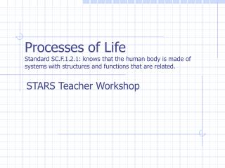 STARS Teacher Workshop