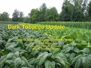 Dark Tobacco Update