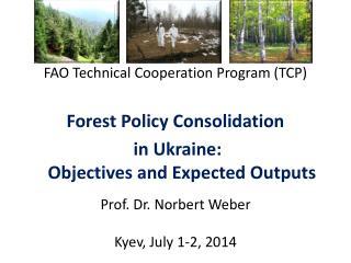 Prof. Dr. Norbert Weber Kyev, July 1-2, 2014
