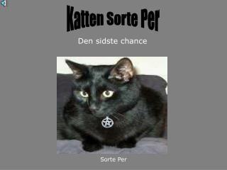 Katten Sorte Per