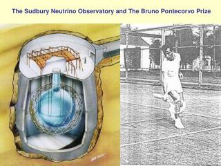 The Sudbury Neutrino Observatory and The Bruno Pontecorvo Prize