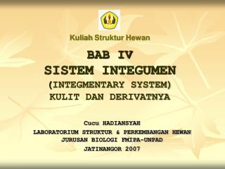 BAB IV SISTEM INTEGUMEN  ( INTEGMENTARY SYSTEM) KULIT DAN DERIVATNYA