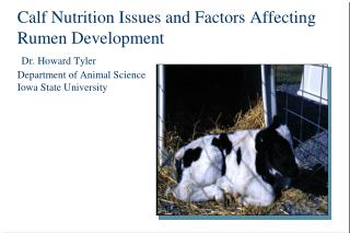 Calf Nutrition Issues and Factors Affecting Rumen Development  Dr. Howard Tyler Department of Animal Science Iowa State