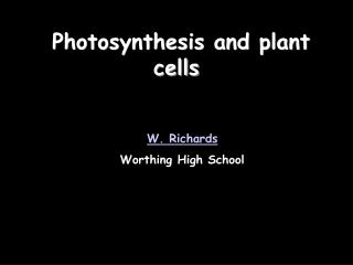 Photosynthesis and plant cells