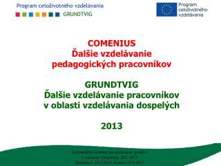 Záverečná správa 2013