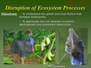 Disruption of Ecosystem Processes