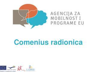 Comenius radionica