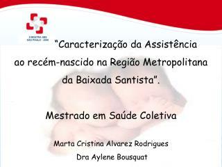 Caracteriza  o da Assist ncia  ao rec m-nascido na Regi o Metropolitana  da Baixada Santista .  Mestrado em Sa de Colet
