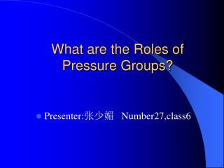 What are the Roles of Pressure Groups?