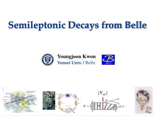 Semileptonic Decays from Belle