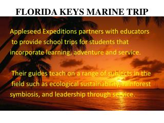 FLORIDA KEYS MARINE TRIP