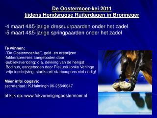 De Oostermoer-kei 2011  tijdens Hondsrugse Ruiterdagen in Bronneger