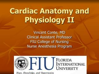 Cardiac Anatomy and Physiology II