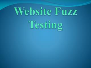 Website Fuzzing