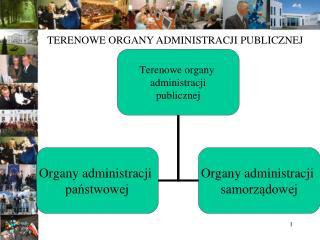 TERENOWE ORGANY ADMINISTRACJI PUBLICZNEJ