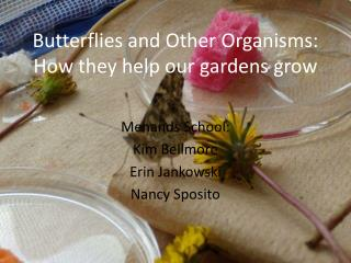 Butterflies and Other Organisms:  How they help our gardens grow