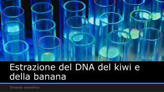 Estrazione del DNA del kiwi e della banana