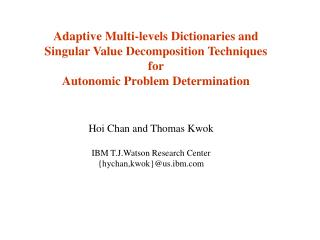 Adaptive Multi-levels Dictionaries and  Singular Value Decomposition Techniques for
