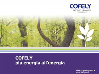 COFELY più energia all'energia