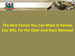 Kansas City MO, for pet odor and stain removal