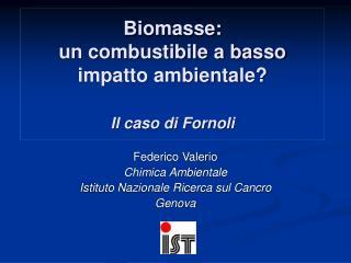 Biomasse: un combustibile a basso  impatto ambientale? Il caso di Fornoli