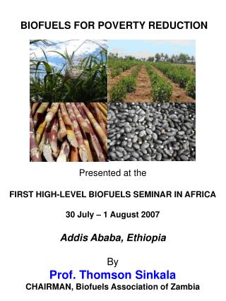 Presented at the  FIRST HIGH-LEVEL BIOFUELS SEMINAR IN AFRICA  30 July   1 August 2007  Addis Ababa, Ethiopia  By Prof.