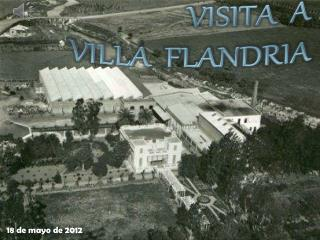 ALGOSELAN - Villa Flandria / grupo amarillo