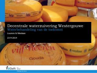 Decentrale waterzuivering Westergouwe