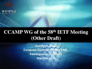 CCAMP WG of the 58 th  IETF Meeting (Other Draft)