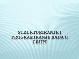 Strukturiranje i programiranje rada u grupi