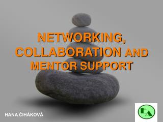 NETWORKING, COLLABORATION AND  MENTOR SUPPORT