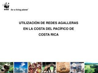 UTILIZACI N DE REDES AGALLERAS EN LA COSTA DEL PAC FICO DE COSTA RICA