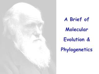 A Brief of Molecular Evolution & Phylogenetics