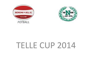 TELLE CUP 2014