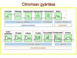 Citromsav gyártása