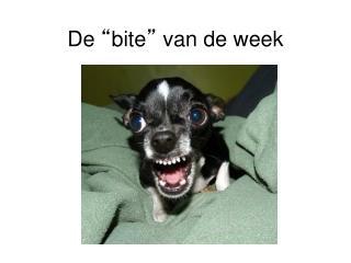 """De  """" bite """"  van de week"""