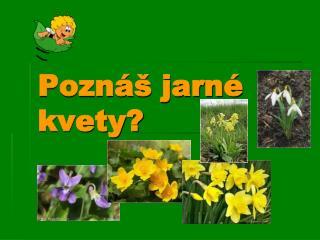 Poznáš jarné kvety?
