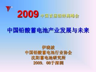 2009 中国首届铅锌高峰会 中国 铅酸蓄电池 产业发展与未来