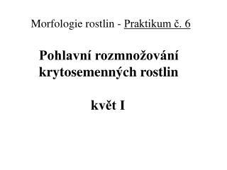 Morfologie rostlin  -  Praktikum č.  6         Pohlavní rozmnožování