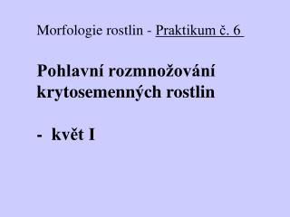 Morfologie rostlin  -  Praktikum ?.  6 Pohlavn� rozmno�ov�n� kryto semenn�ch rostlin -  kv ?t I