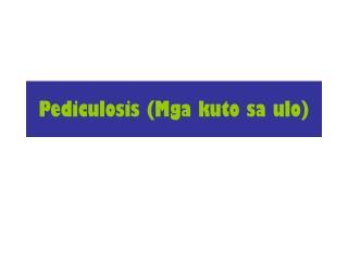 Pediculosis (Mga kuto sa ulo)