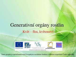 Generativn� org�ny rostlin